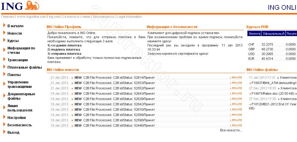 Интернет-банк «ING Online» для бизнеса (общий вид интерфейса)